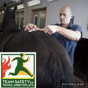 2019_hästkliniken_romme_antonio_teamsafety